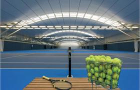 The Tennis Shoulder
