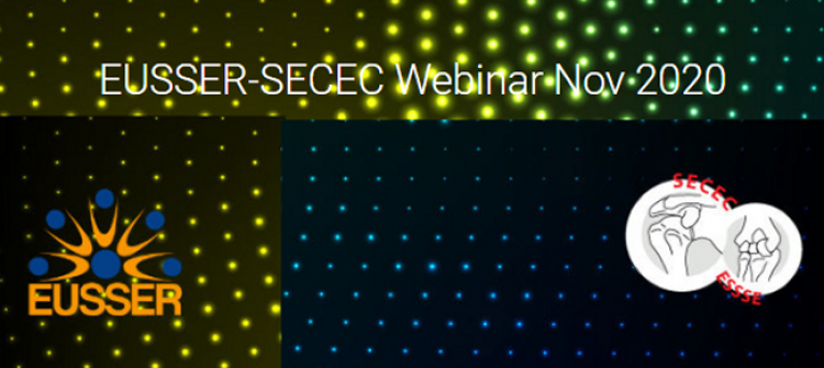 EUSSER-SECEC webinar
